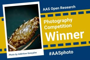 AAS photography competition winner feature image